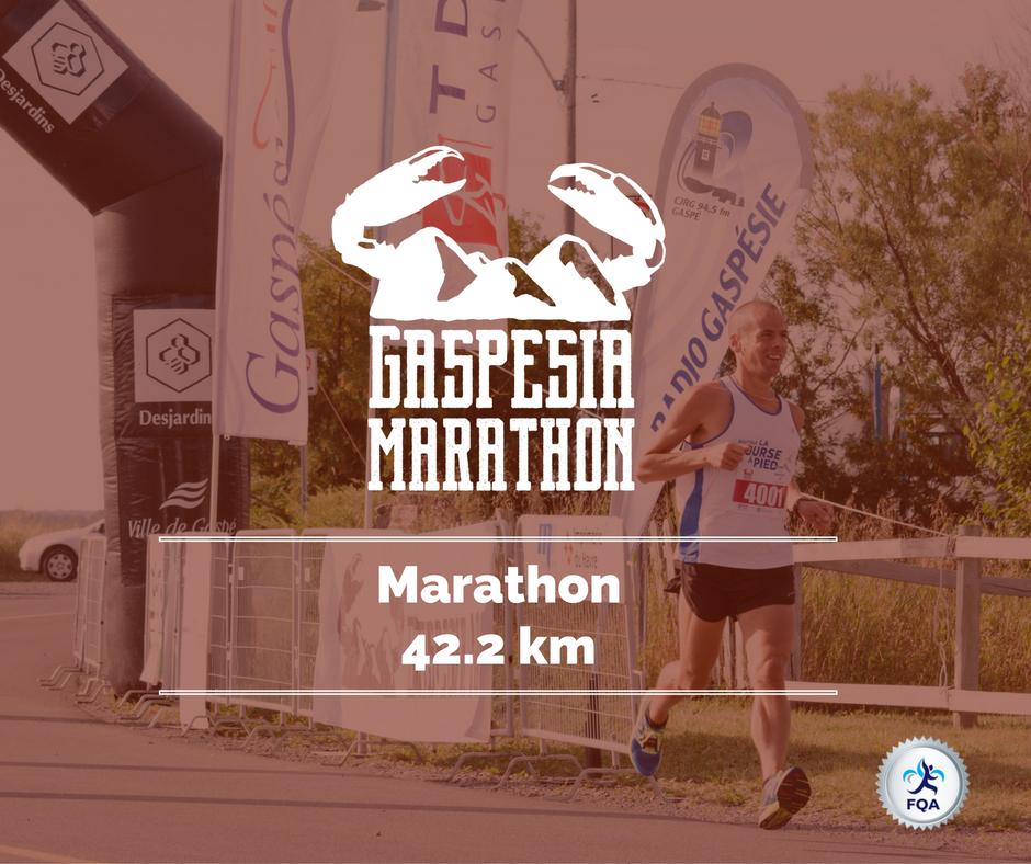 marathon-gaspesia-gaspe-gaspesie-42-2km